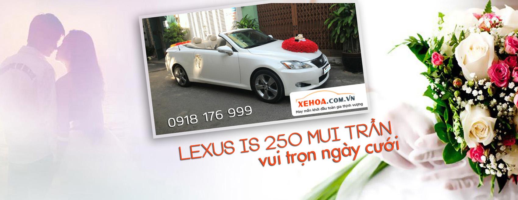banner-xehoa-lexus